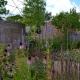 vanDaalen buiten bloemrijke familietuin Rijswijk 1