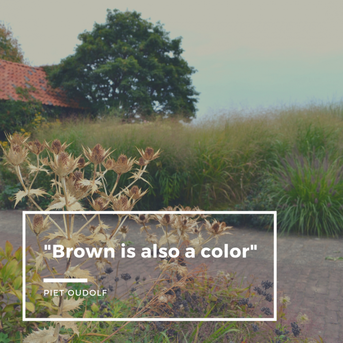 brown is also a color Piet Oudolf